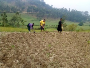 Rukundo Staff Planting Vegetables for the School
