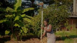 Preparing gardens for fruit and vegetables growing