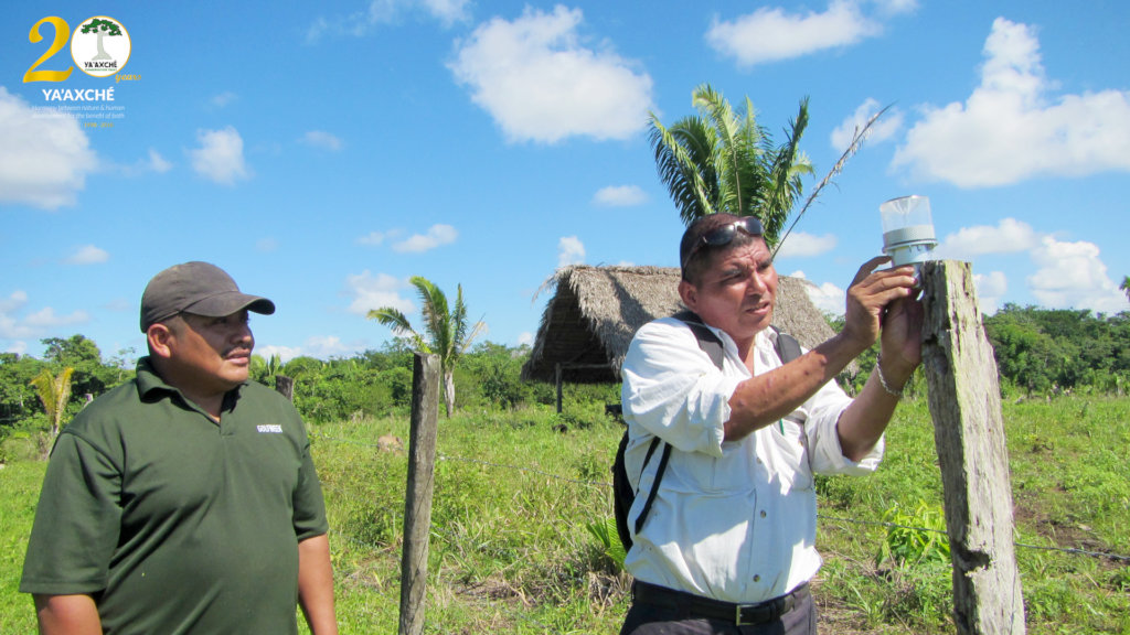 Reduce Clashes Between Jaguars & Farmers in Belize