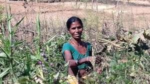 Jamani making a sustainable livelihood in Rudana