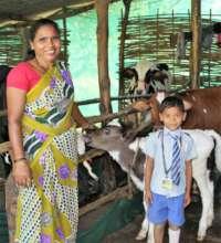 Kamli the Dairy Farmer
