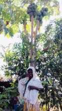 Meena is learning vermi composting to grow veggies