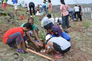 Our Youths on a Tree Plantation Drive