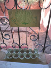 Starting garden seedlings in Tighomar, Morocco