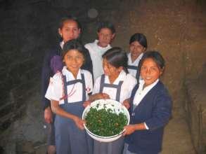 Peru Salad