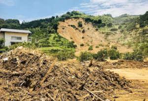 Orange field in the landslide