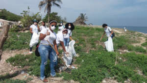Volunteers in cleaning day trips