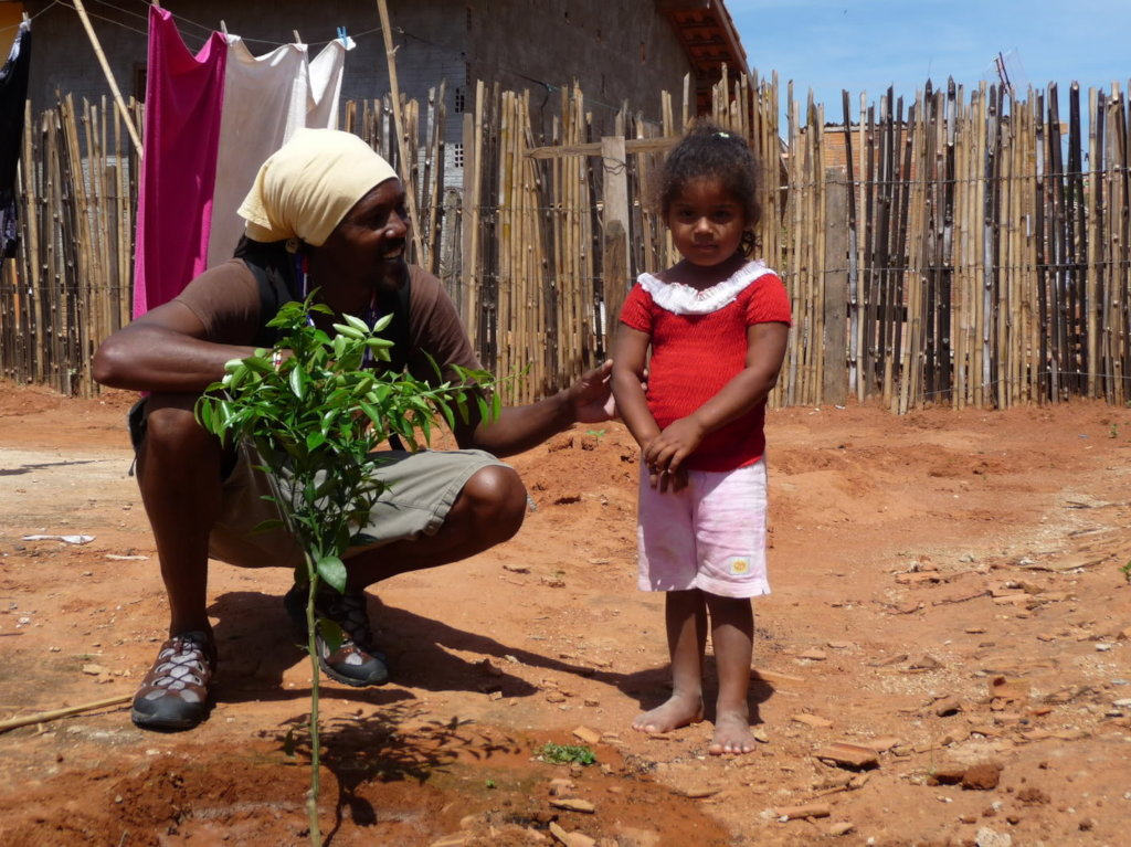 Reforesting Brazil with Fruit Trees