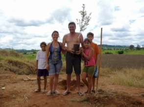 Fruit trees for families