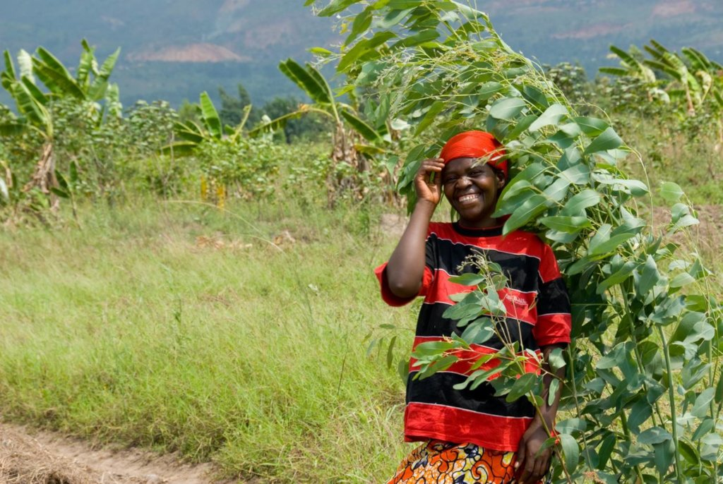 Help rural farmers in Africa gain access to land