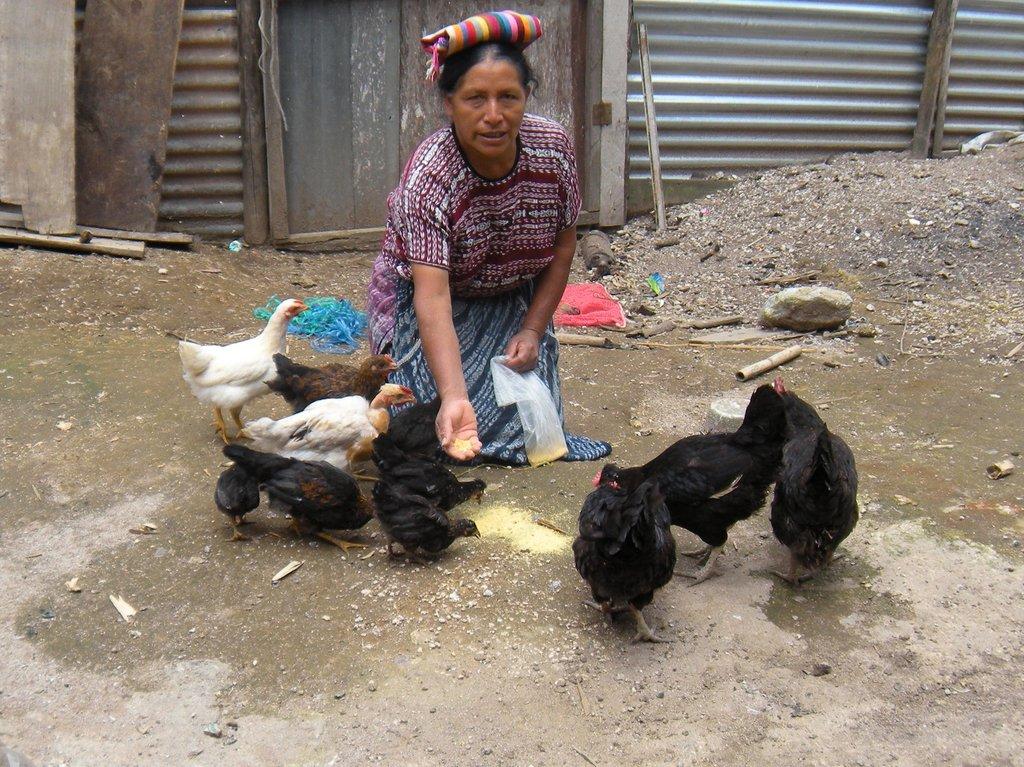 Provide microloans for 30 Guatemalan women
