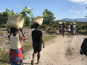 Carrying seedlings to the corridors for planting