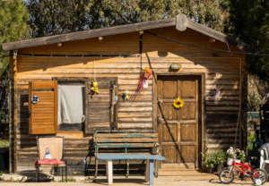 Pikpa camp shelter