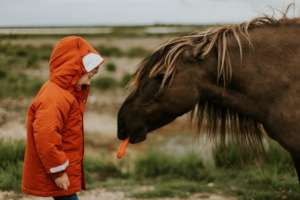 Animal Assisted Therapy for Disadvantaged Children