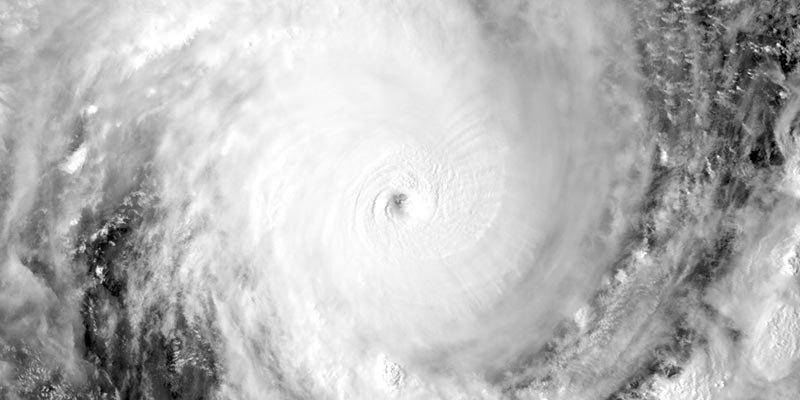 Habitat for Humanity - Hurricane Michael Response