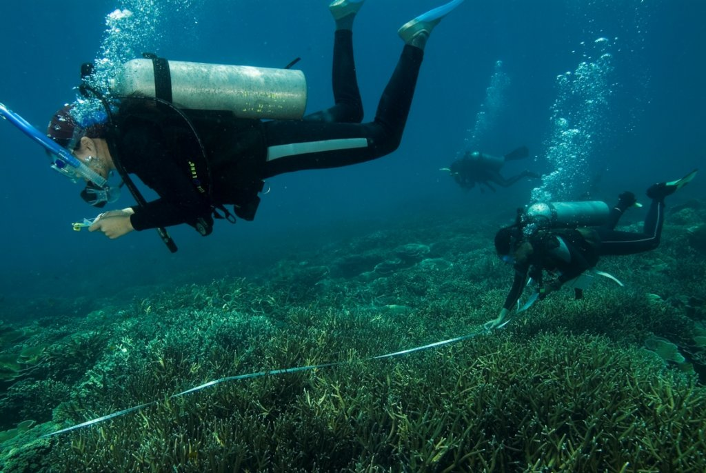 Coral Reef Monitoring Programme in Malaysia