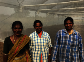 Women farmers in front of the greenhouse