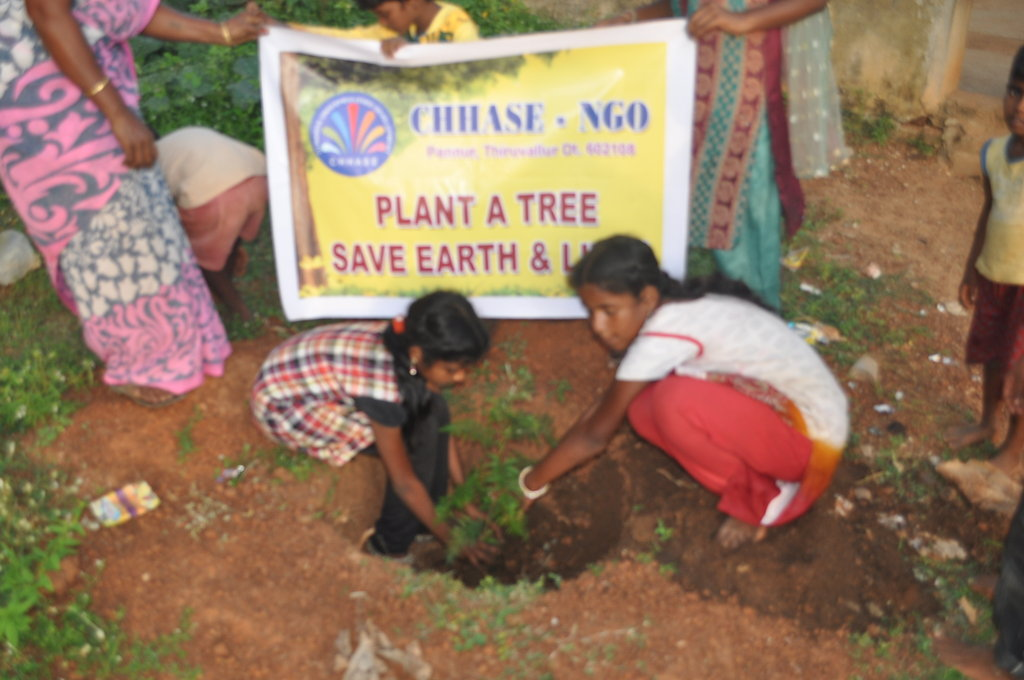 Help to plant 2000 trees in rural schools