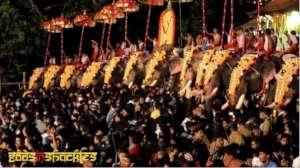 Bull elephants exploited in cultural festivals