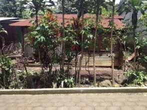 Creation of a new garden.