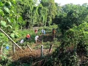 Weeding new garden plot