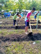 Preparing the soil with biochar fertilizer