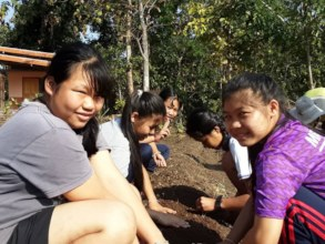 Planting and weeding