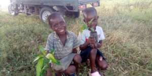Children not working but happy showing seedlings