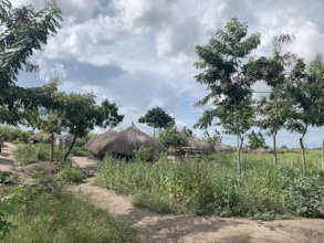 A refugee homestead with GlobalGiving trees