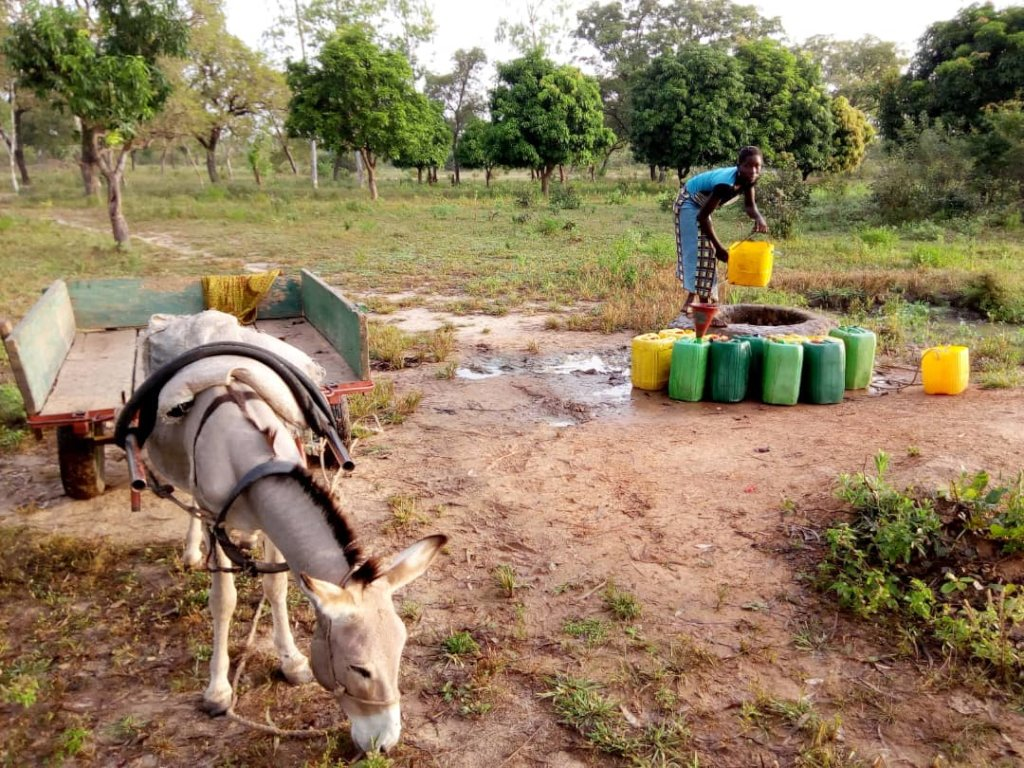 Clean Water for 1200 villagers in Burkina Faso