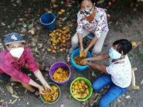 Joanna and Perse pulping mango