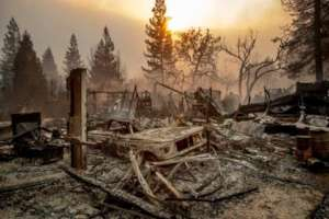 Camp Fire Evacuation Relief Fund