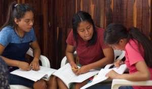 Scholars in community work planning