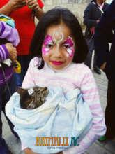 Little girl and her recently sterilized kitten