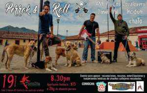 Perrock poster 2016 to raise funds
