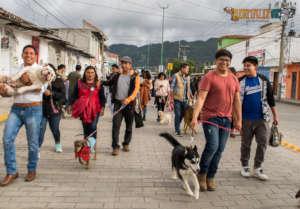 Walk for animal welfare