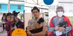 Help stop animal suffering in Chiapas, Mexico