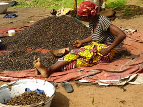 Palm Oil Processing before Mechanization