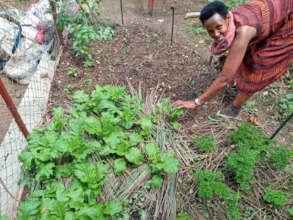 A family garden plot in Rwanda.