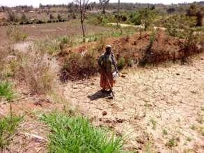 Gardener Esther in dry area.