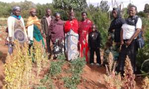 Grow East Africa, Ethiopia