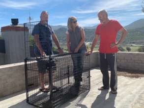 New trap-cage for injured baboons and wildlife