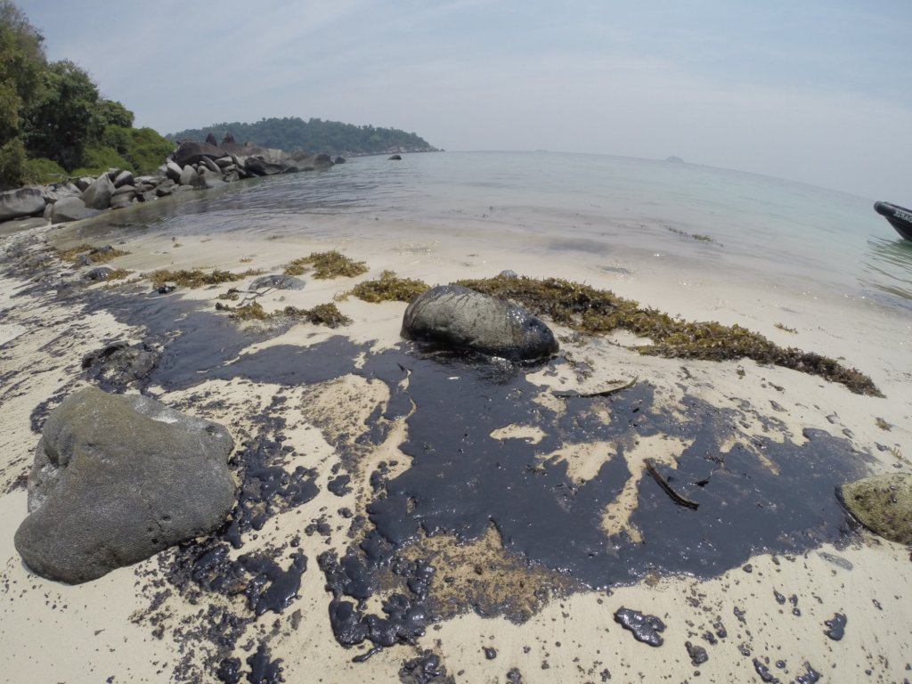 Save 500 hectares of Coral Reefs in Malaysia!