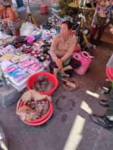 Bushmeat being sold at the Market