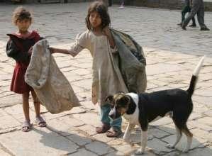 FREE OF COST STREET CHILDREN EDUCATION BANGLADESH