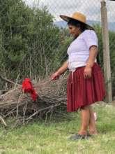 Juana demonstrating wool dyeing