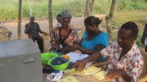 Village Savings & Loans Assoc., Avaga, Ghana