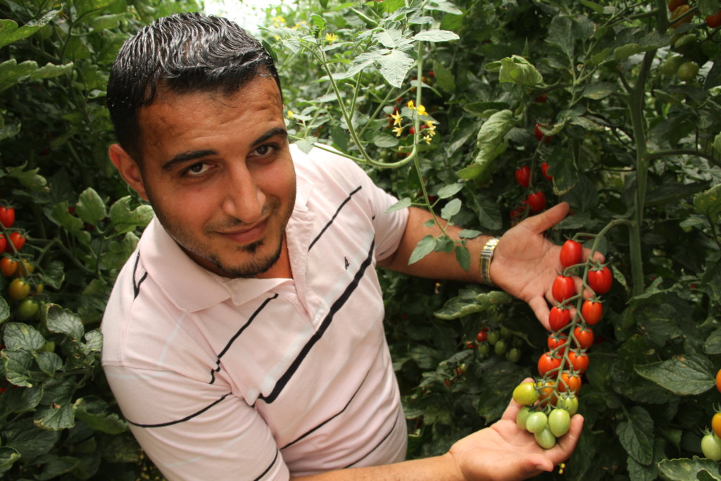 Peacebuilding through Agricultural Partnerships