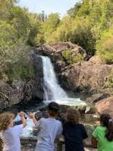 Descubriendo el Parque Nacional Alerce Andino