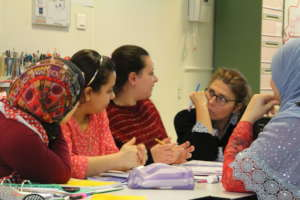 French classes : experience of collaborative work